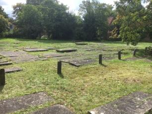 jewish cemetery 8